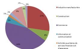 Répartition du chiffre d'affaires par secteur d'activité